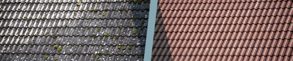 nettoyage démoussage toit terre cuite
