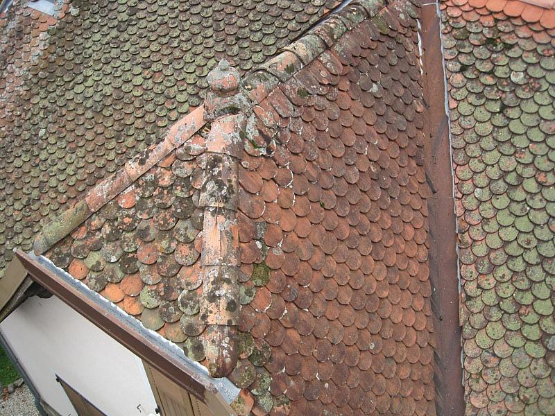 Démoussage toiture en tuiles écailles avant les travaux